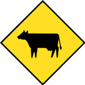 cattle xing Tester Takes on E.Coli Problem